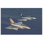 1/72 EF-2000 100th Anniversary Special Colours AMI - Super Decal Sheet Included