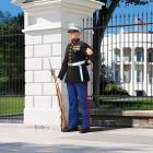 1/16 US Marine Sergeant