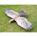 Dancing wings EPP Flying Eagle Kit ( PnP )